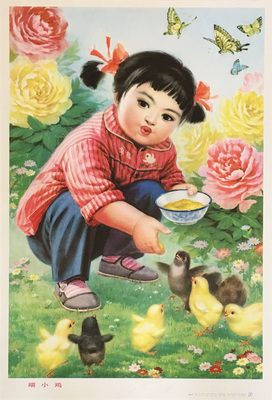Chinese Girl Feeding Little Chickens