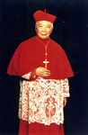 Cardinal Gong Pinmei - Formal Portrait