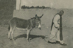A Little Brother of St. John the Baptist with the Donkey of the Monastery